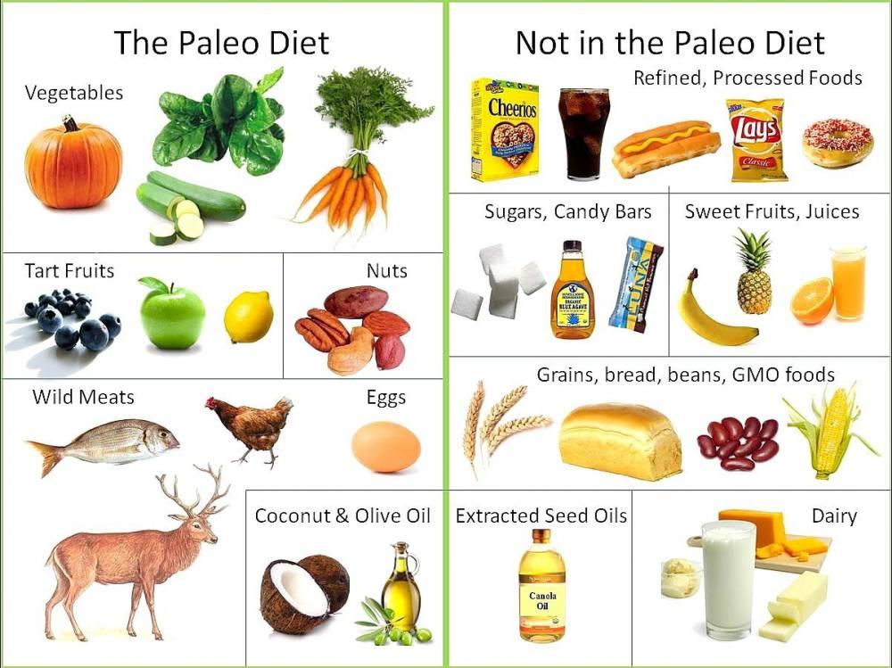 Paleo dieta alimente pentru pierderea in greutate |