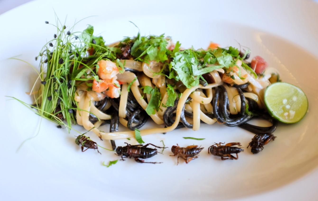 Insectele vor fi introduse în meniurile restaurantelor din România, iar noi nu suntem pregătiți pentru asta!